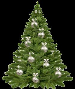 christmas-tree-1853582_1920 (K)